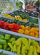 Peppers, squash, zucchini and tomatoes (produce) are colorful at roadside market in Cape May County, New Jersey