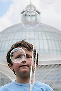 A young boy blows bubbles on a hot day in summer, in front of Glasgow's Kibble Palce in the Botanic Gardens