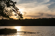 Scene from a hike at the newly-opened Middletown Reservoir Trails on May 23, 2020.