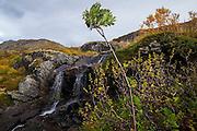 A small waterfall above Tridalsvatnet, Moskenesoya, Lofoten Islands, Norway.