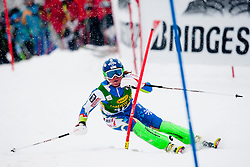 FERKMarusa of Slovenia during 1st Run of 50th Golden Fox Audi Alpine FIS Ski World Cup Ladies Slalom, on February 2, 2014 in Podkoren, Kranjska Gora, Slovenia. (Photo By Urban Urbanc / Sportida.com)