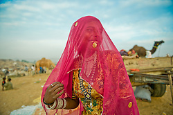 Subita Devi  at the world's largest annual cattle fair in the desert town of Pushkar, in the Indian state of Rajasthan. Every year thousands of camel herders from the semi-nomadic Rabari tribe, who make a living rearing animals, travel for two to three weeks across 500 kilometers to set up camp in the desert dunes near Pushkar to sell their livestock. The herders sell more than 20,000 camels, horses and other animals at the annual cattle fair.