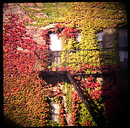 Fire escape in Autumn in Park Slope, Brooklyn