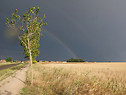 As the rain storm cleared to the East, the dark sky and contrasting rainbow were very dramatic. Storms such as this are common in the Summer months in Northern Spain.