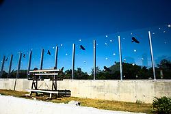 April 18, 2018 - SãO Paulo, Brazil - SÃO PAULO, SP - 18.04.2018: MURO DE VIDRO DA USP SUBSTITUÍDO - Less than 2 weeks after the inauguration, the former mayor, João Dória, from part of the glass wall of USP, a panel was broken and already replaced, on Wednesday morning (18) (Credit Image: © Eliane Neves/Fotoarena via ZUMA Press)