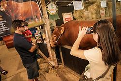 Ambiental no Pavilhão do Gado de Corte durante o 2º dia da 39ª Expointer, Exposição Internacional de Animais, Máquinas, Implementos e Produtos Agropecuários. A maior feira a céu aberto da América Latina,  promovida pela Secretaria de Agricultura e Pecuária do Governo do Rio Grande do Sul, ocorre no Parque de Exposições Assis Brasil, entre 27 de agosto e 04 de setembro de 2016 e reúne as últimas novidades da tecnologia agropecuária e agroindustrial. FOTO: Gustavo Roth / Agência Preview