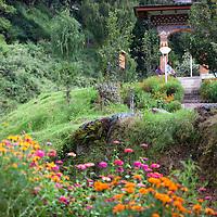 Asia, Bhutan, Trongsa. Trongsa Dzong Gate and Flowers.