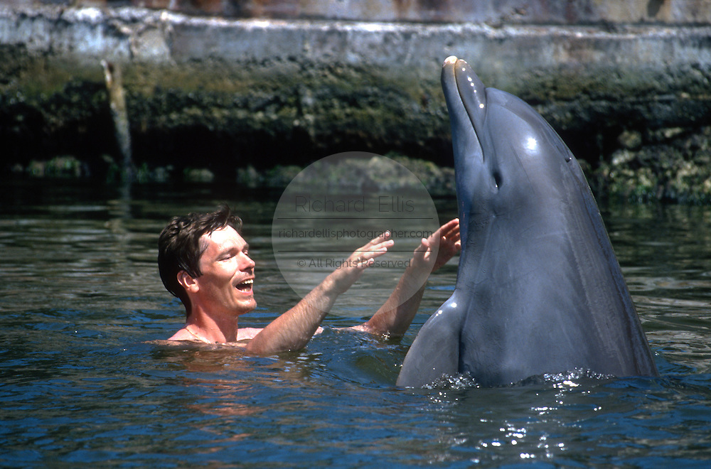 A tourist plays with a bottle nose dolphin at the Dolphin Research Center June 27, 1996 in Marathon Key, FL.  The center is where the original Flipper was trained and specializes in returning trained dolphins to the wild.