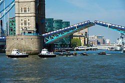 © Licensed to London News Pictures. 30/05/2012 London, UK. The Royal Barge Honour Guard sails under Tower Bridge ahead of the Queen's  Jubilee celebrations. for the Diamond Jubilee Pageant. Photo credit : Simon Jacobs/LNP
