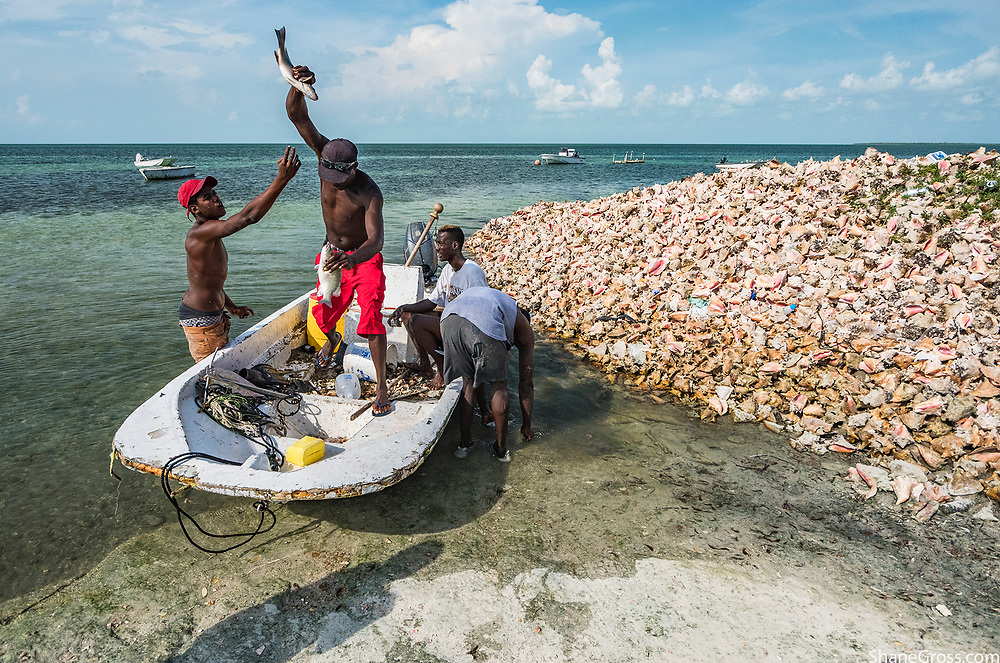 Fisherman in West End, Grand Bahama use fish to settle a small debt near a conch midden (pile of shells).