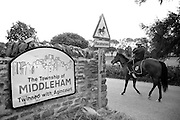 A horse and rider walk home from the gallop in Middleham North Yorkshire.