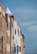 Facades of the buildings facing the ocean in the medina of Essaouira, Morocco