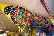 Jonathan Socher at the Big Wind Kite Factory in Maunaloa, Molokai, Hawaii, USA
