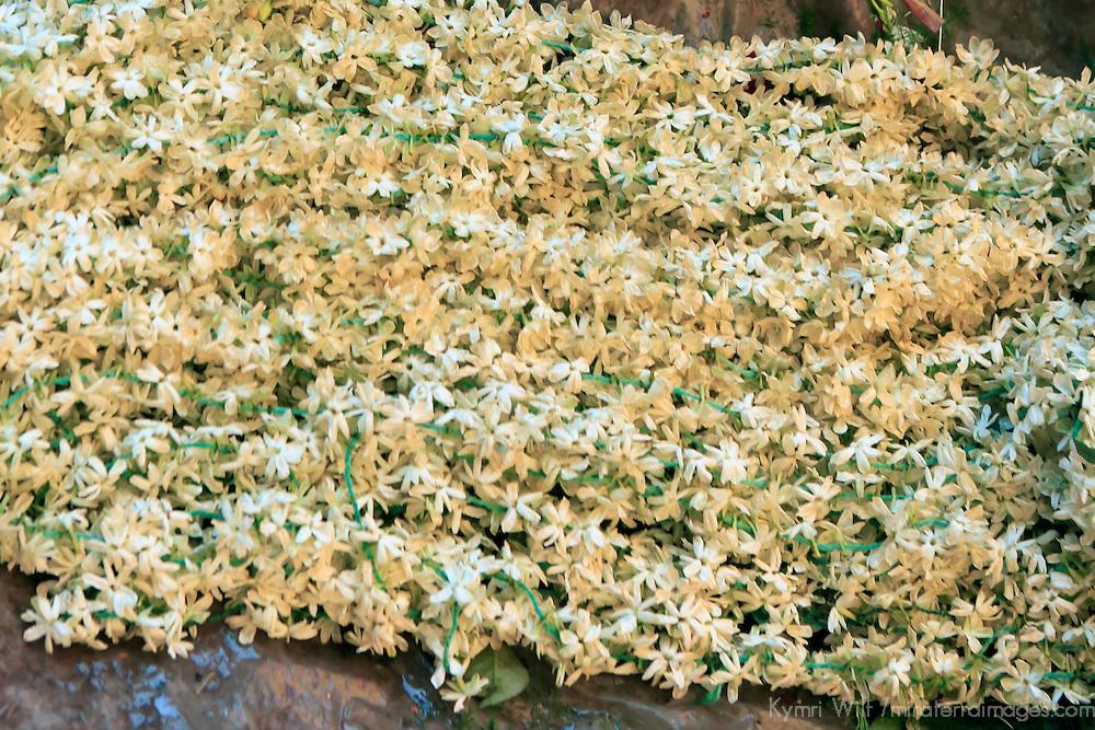Asia, India, Calcutta. White Freesia garlands in the flower market in Calcutta.
