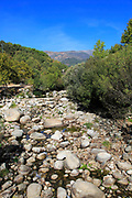 Tributary stream at low level in summer, Rio Tietar river, Jarandilla de la Vera, La Vera, Extremadura, Spain