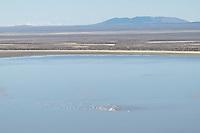Warner Lakes Wetlands, Oregon
