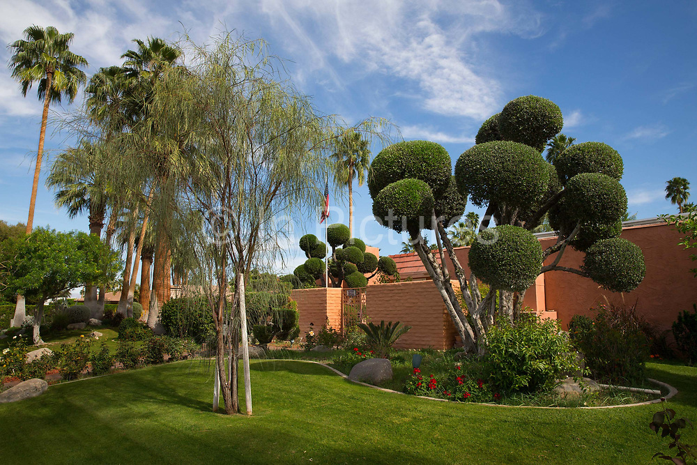 Well watered garden in Palm Springs, California, a state that is suffering it's worst drought since 1950. Water levels in the spring of 2015 are only 5% of the average. For the first time ever, towns and cities in California will face a mandatory 25 percent cut in their water use.