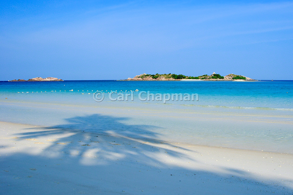 Palm Tree shadow on beach - Pulau Redang, Malaysia <br /> <br /> Editions:- Open Edition Print / Stock Image