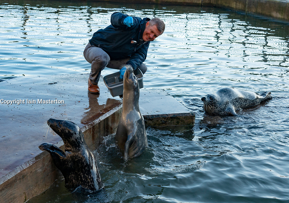 St Andrews, Scotland, UK. 30th November 2019. Scottish Liberal Democrat Leader Willie Rennie fed the seals at the St Andrews aquarium and talked about how his party's plans to stop independence and Brexit and build a Scotland that stands strong and proud in the UK and the EU. Iain Masterton/Alamy Live News.