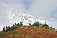 Gibraltar Rock looms in the clouds above Paradise Meadows in Mount Rainier National Park, WA, USA.