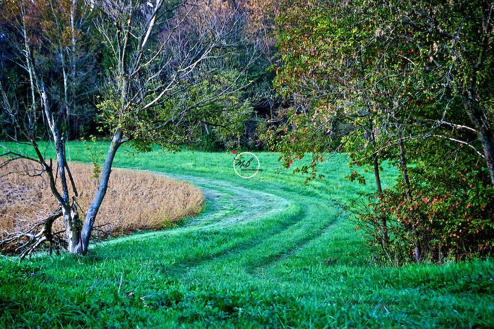 Fred's Green Field Haysville Indiana