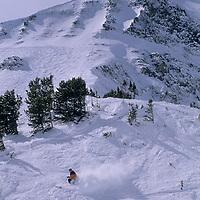"SKIING, Big Sky, MT. Patrick Shanahan (MR) skis off piste beside ""Upper Morning Star"" run below Triple Chair. Lone Mt. bkg."