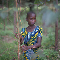 Dolca. She stands in front of a wood that her father planted. Mr Abdallah has planted 1,700,000 trees, mainly Eucalyptus and Grevillea but also leguminous species for firewood, forage and nitrogen-fixing green manure.