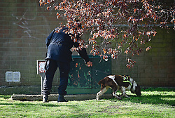© Licensed to London News Pictures. 20/04/2016. A police security team with a sniffer dog sweeps the area before QUEEN ELIZABETH II officially opens the new bandstand at Alexandra Gardens, in Windsor on the eve of her 90th birthday. Photo credit: Hannah McKay/LNP