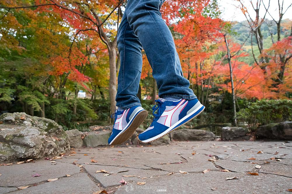 Autumn scenes at Gifu Park