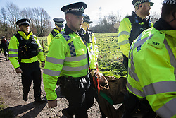 Denham, UK. 11 February, 2020. Thames Valley Police officers arrest an environmental activist from Extinction Rebellion who had been 'slow walking' in front of a large truck delivering a JCB forklift truck to a HS2 site. Contractors working on behalf of HS2 are rerouting electricity pylons through a Site of Metropolitan Importance for Nature Conservation (SMI) in conjunction with the high-speed rail link.