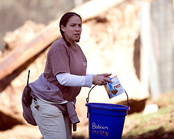 Primate keeper Dannielle Stith puts out food in the Hamadryas baboon exhibit at the Oakland Zoo, Wednesday, Dec. 23, 2015. (D. Ross Cameron/Bay Area News Group)