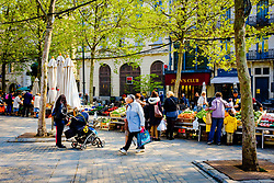 A general view of the Place Carnot, Carcassonne, France with the Farmer's market in progress<br /> <br /> (c) Andrew Wilson   Edinburgh Elite media