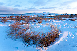 © London News Pictures. 30/01/2015. Mynydd Epynt, Powys, Wales, UK. There is snow on land above 300 metres with a wind chill giving a 'Feels Like' temperature of about minus 8 degrees celcius on the Mynydd Epynt moorland range of hills in Powys, Mid Wales. Photo credit : Graham M. Lawrence/LNP.