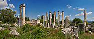 The Temple of Aphrodite at the centre of Aphrodisias. All that remains of the ancient temple consists of fourteen of the over forty Ionic columns that once surrounded it and the foundations of the cellar section. building started in the 1st century BC completed during the reign of Augustus. <br /> <br /> Aphrodisias Archaeological Site, Aydin Province, Turkey. .<br /> <br /> If you prefer to buy from our ALAMY PHOTO LIBRARY  Collection visit : https://www.alamy.com/portfolio/paul-williams-funkystock/aphrodisias-site-turkey.html<br /> <br /> Visit our TURKEY PHOTO COLLECTIONS for more photos to download or buy as wall art prints https://funkystock.photoshelter.com/gallery-collection/3f-Pictures-of-Turkey-Turkey-Photos-Images-Fotos/C0000U.hJWkZxAbg