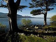 Carrauntoohill Mountain overlooking Lough Leane, Killarney.<br /> Photo Don MacMonagle