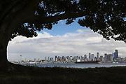 The Seattle downtown skyline catches a sun break. (Ken Lambert / The Seattle Times)
