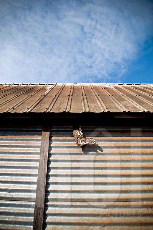 An animal jowbones hangs outside of a Bahnar ethnic house, Pleiku area, Vietnam, Asia