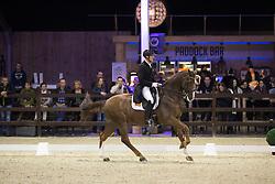Van Der Meer Patrick, (NED), Zippo<br /> Grand Prix Freestyle Test<br /> CDI 4* Azelhof Lier 2015<br /> © Hippo Foto - Leanjo de Koster