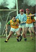Meath v Limerick NHL 1996