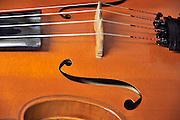 Nederland, Nijmegen, 8-10-2011..Een cello...Foto: Flip Franssen/Hollandse Hoogte