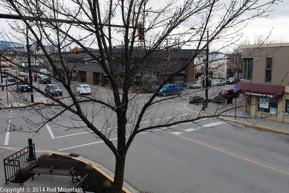 A barren tree blocks the view of an intersection in Vernon, British Columbia.