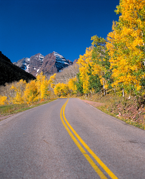 The road to Maroon Bells is flanked by golden-leafed trees in the Aspen area of Colorado.
