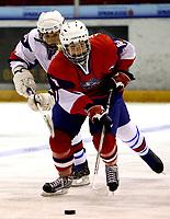 Ishockey<br /> VM for kvinner<br /> Graz Østerrike <br /> Norge<br /> Foto: Gepa/Digitalsport<br /> NORWAY ONLY<br /> <br /> 09.04.2009<br /> <br /> IIHF Damen Eishockey Weltmeisterschaft, Divison 1, SVK vs NOR. Bild zeigt Helene Martinsen (NOR) und Petra Pravlikova (SVK)