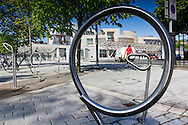 Scottish Parliament Building Through Circle Of Bike Rack. Blue Sky And Green Foliage On Trees