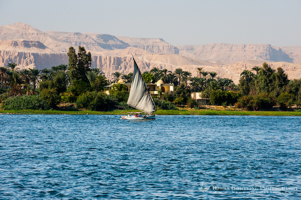 Egypt, Luxor. The Nile passing Luxor. A felucca, a traditional sailboat.