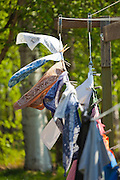 Clothes hang to dry on a clothesline at the Bradley Orchard in Chugiak, Alaska.