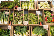 The Gathering Together Farm vegetable display