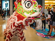 25 JANUARY 2017 - BANGKOK, THAILAND:        Lion dancers perform in Central World during Chinese New Year, also called Tet, celebrations in Bangkok. 2017 is the Year of the Rooster in the Chinese zodiac. This year's Lunar New Year festivities in Bangkok were toned down because many people are still mourning the death Bhumibol Adulyadej, the Late King of Thailand, who died on Oct 13, 2016. PHOTO BY JACK KURTZ
