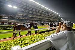 Horseracing meeting at Al Meydan rcecourse at night in Dubai United Arab Emirates