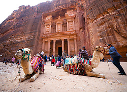 Camels wait for tourist customers at The Treasury (Al Khazneh), at Petra, Jordan, UNESCO World Heritage Site
